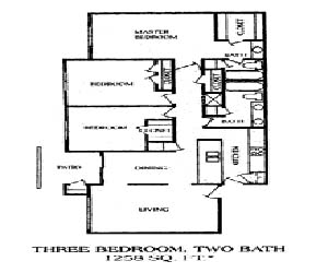1,258 sq. ft. 3BA floor plan