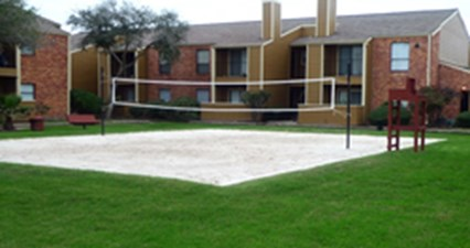 Volleyball at Listing #138319