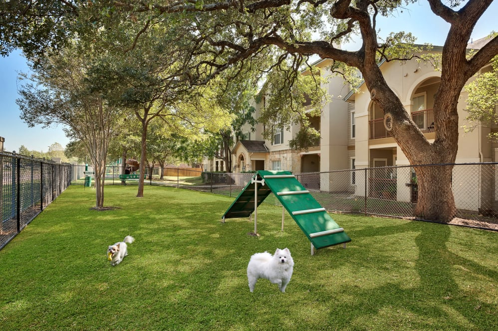 Dog Park at Listing #141409