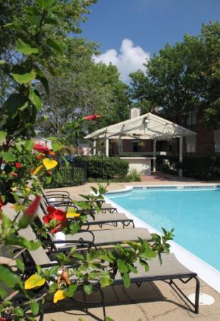 Pool at Listing #138532