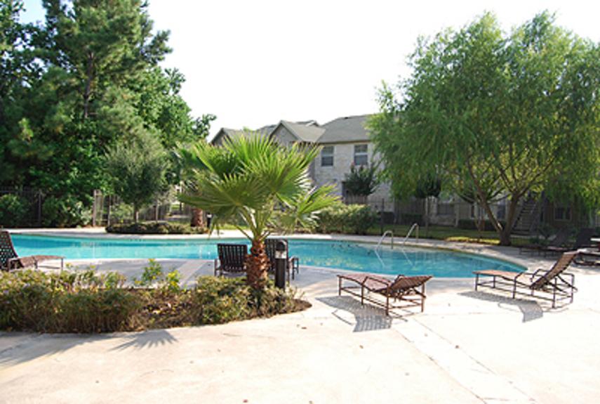 Pool at Listing #139282