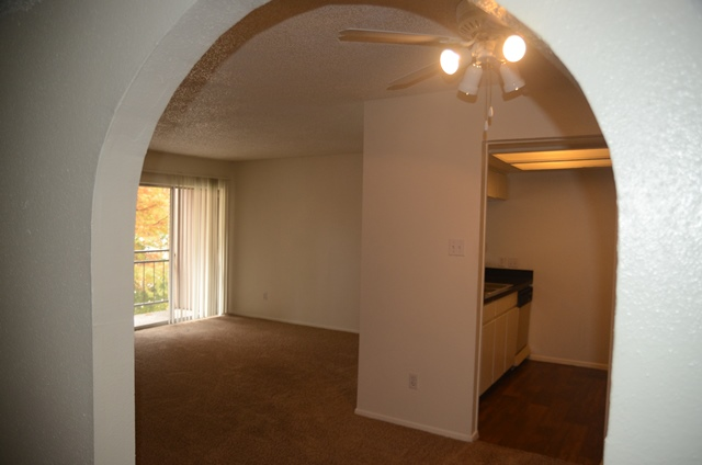 A3 Arch at Listing #140364