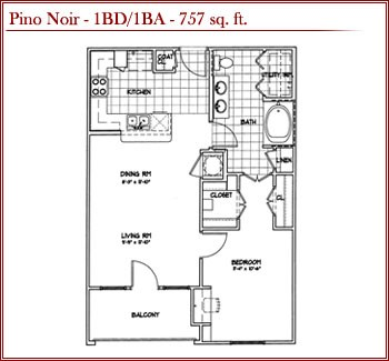 757 sq. ft. PINO NOIR floor plan
