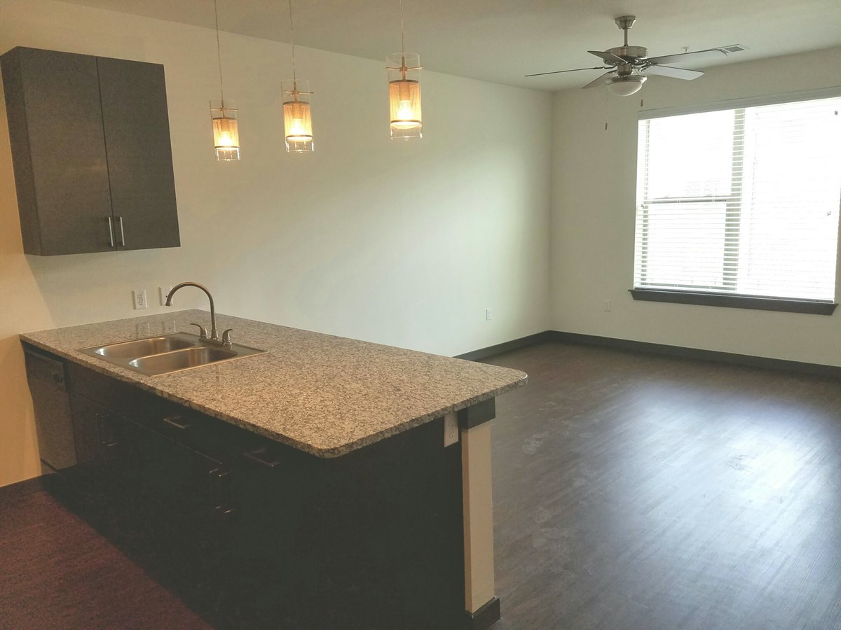 Living/Kitchen at Listing #289211