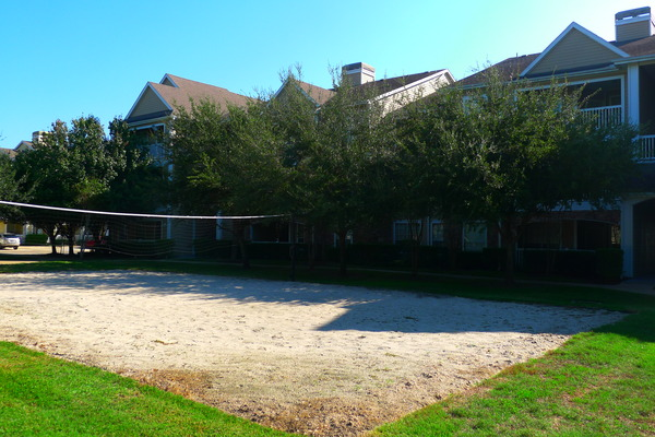 Volleyball at Listing #138854