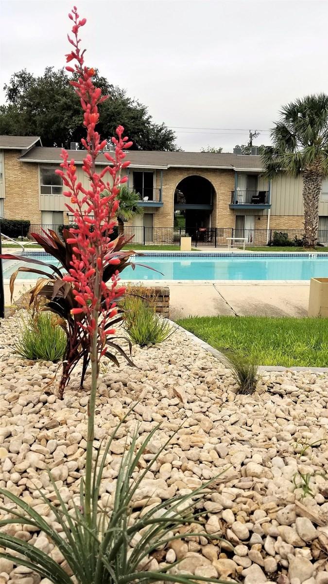 Pool at Listing #140972