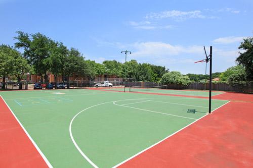 Basketball at Listing #137008