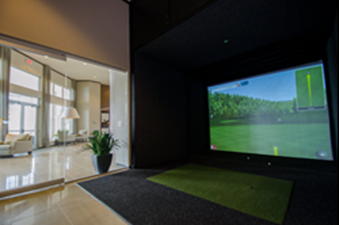 Golf Simulator at Listing #270402