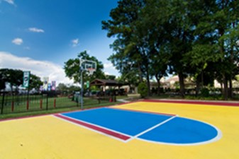 Basketball at Listing #138985