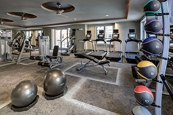 Fitness at Listing #235597