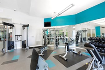 fitness center at Listing #146271