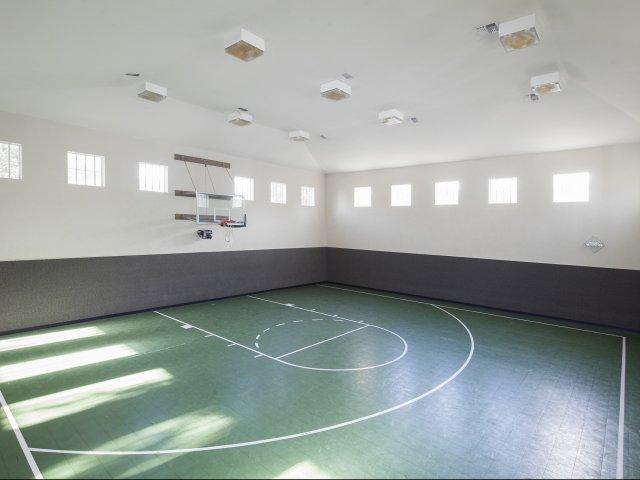 Basketball at Listing #138081