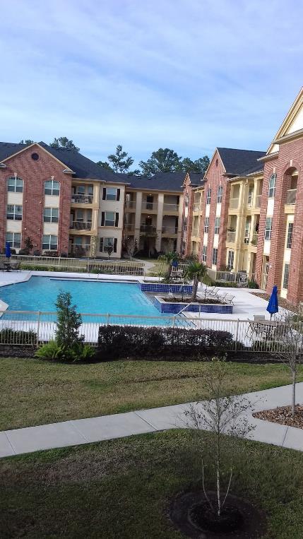 Pool at Listing #256215
