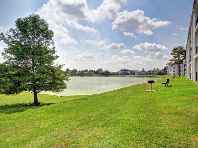 Towne Lake Apartments Houston TX