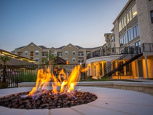 Fire Pit at Listing #155006