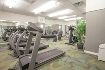 Fitness at Listing #138507