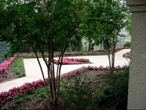 Courtyard at Listing #140667