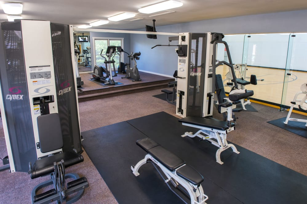 Fitness at Listing #137762