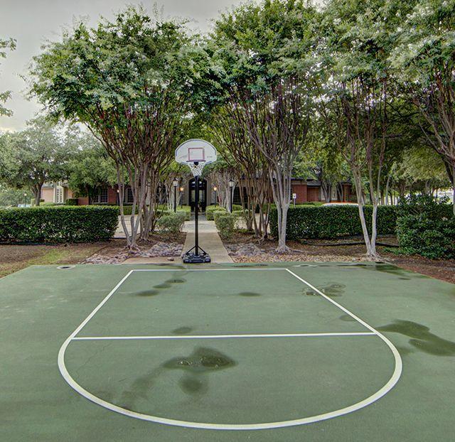 Basketball at Listing #137709