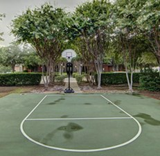 Basketball at Listing #137709